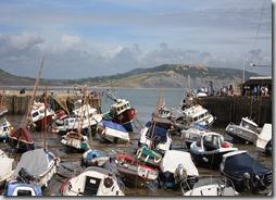 Merchant - Lyme Regis Low Tide